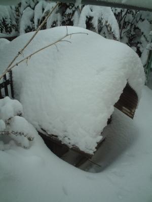 雪に埋もれる、お嬢様の御実家