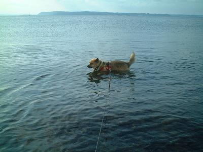 湖、久しぶり♪