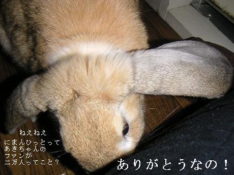 あきちゃんから感謝のお言葉。