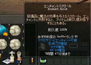 mabinogi_2005_08_29_008.jpg