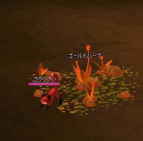 mabinogi_2005_08_30_022.jpg