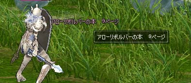 mabinogi_2005_09_10_018.jpg