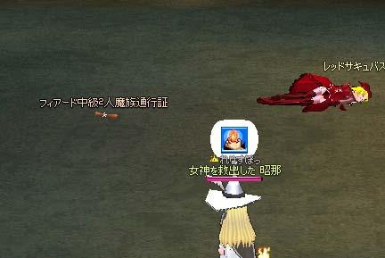 mabinogi_2005_09_30_008.jpg