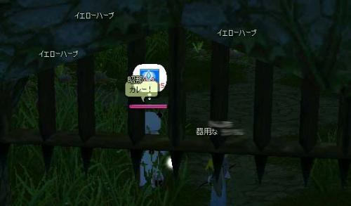 mabinogi_2005_10_25_004.jpg