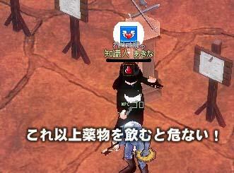 mabinogi_2005_10_26_020.jpg