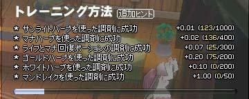 mabinogi_2005_11_14_001.jpg
