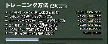 mabinogi_2005_11_15_001.jpg