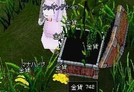 mabinogi_2006_05_27_004.jpg
