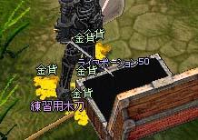 mabinogi_2006_05_27_006.jpg