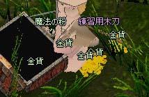 mabinogi_2006_05_27_007.jpg