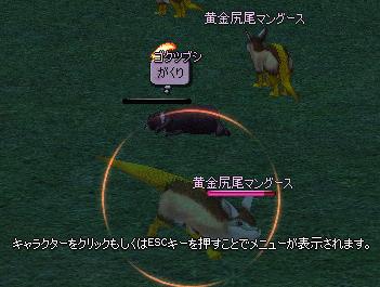 mabinogi_2006_06_26_029.jpg