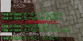8_16_tarako.jpg