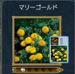 kiiroihana1.jpg