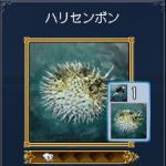 togenoaru1.jpg