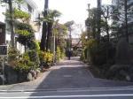jizousaka-koshoji_20060404_01