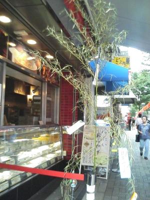 tanabata_20060707_02