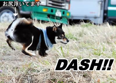 キックエ~ンドダッシュ
