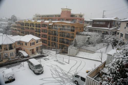 今日は雪が降りました。1