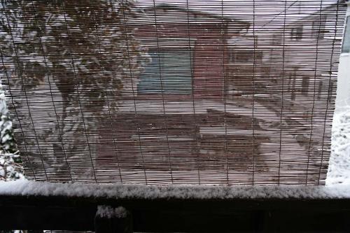 今日は雪が降りました。4