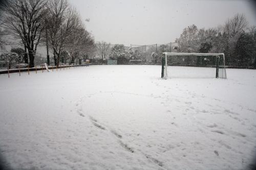今日は雪が降りました。6