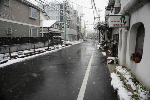 今日は雪が降りました。8