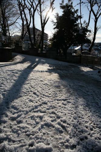 雪降った翌日3