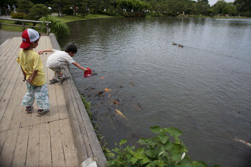 横浜三渓園26