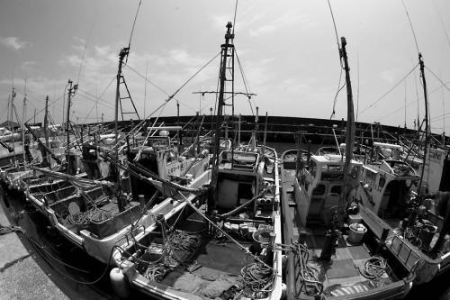銚子漁港4