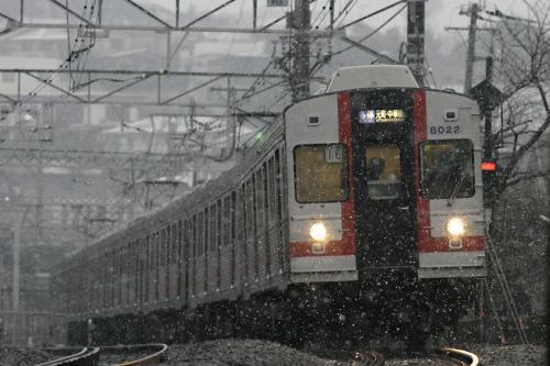東急8000系8021F幕車@菊名・雪の中