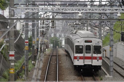 東急8000系8039F未更新車・赤帯@大倉山の橋
