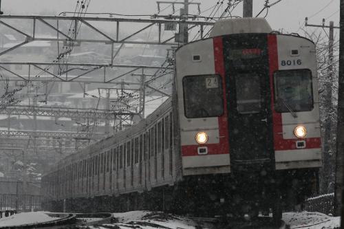 東急8000系8015F1雪の中