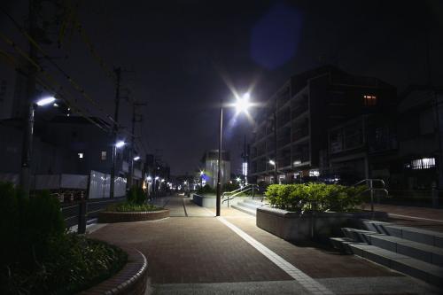 東横フラワー緑道4