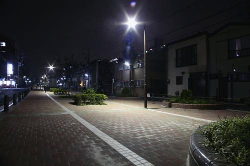 東横フラワー緑道5