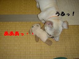 20050512002418.jpg