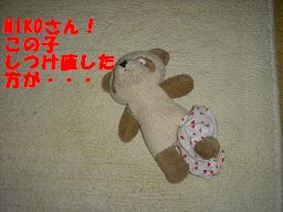 20050512002426.jpg