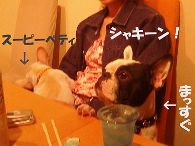20050619215646.jpg