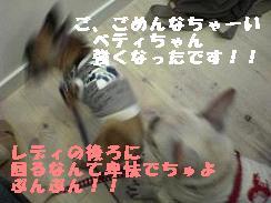 20050905161846.jpg