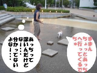 20050919120417.jpg