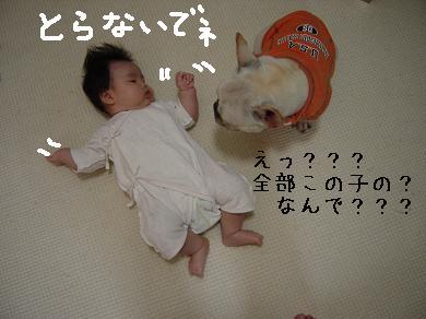 20061101001241.jpg