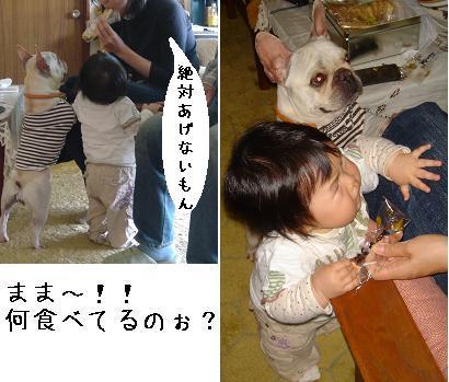 20070530132147.jpg