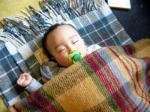 キナバル軒で熟睡のベビごる