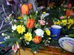 Spring Flower2