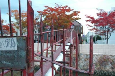 2005_1103_170108AX.jpg