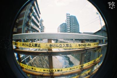 fish04_2005_1030-26.jpg