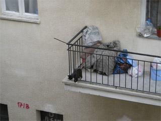 残飯食べた子猫は下へ降りる