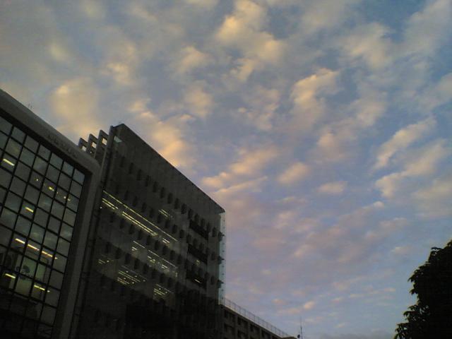 20060720_1.jpg