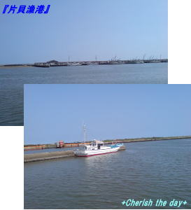 片貝漁港☆