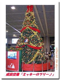成田空港☆ミッキーのツリー☆
