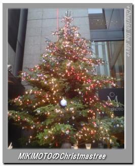 ミキモトのクリスマスツリー061216