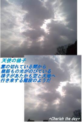 天使の梯子☆070208